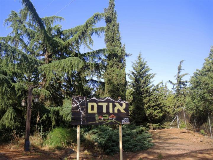 DSCN0222 (Medium)